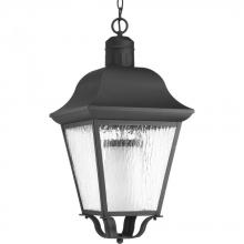 Progress P6538-31 - 1-Lt. hanging lantern